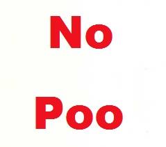 no poo (sampuansız saç yıkama)